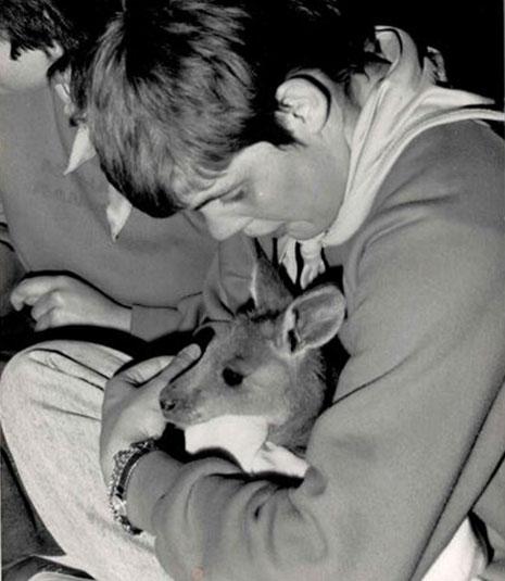 Zesta Kitchens - Ruth with kangaroo